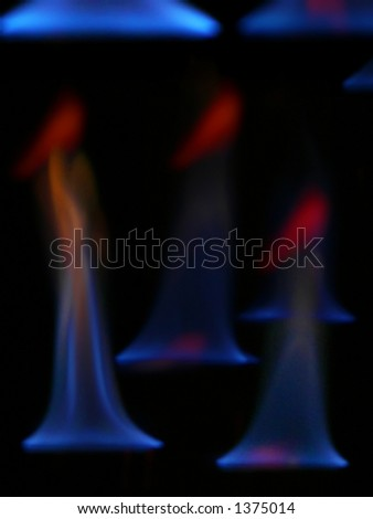 Fire Ladyes - stock photo