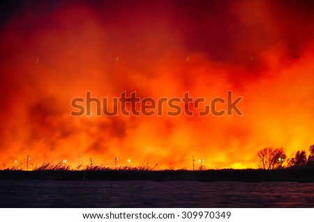 Fire near the rowing canal. Rostov-on-Don. Russia - stock photo