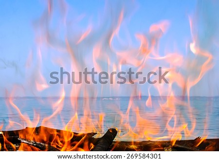 fire of wood on the coast of the sea - stock photo