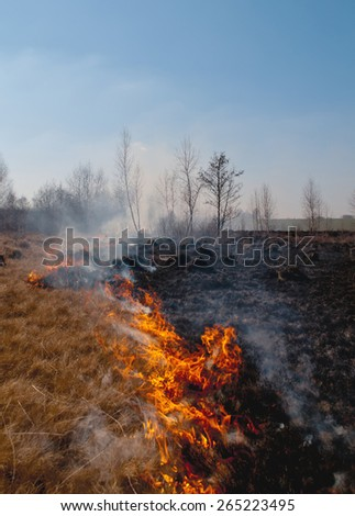 fire on spring field - stock photo