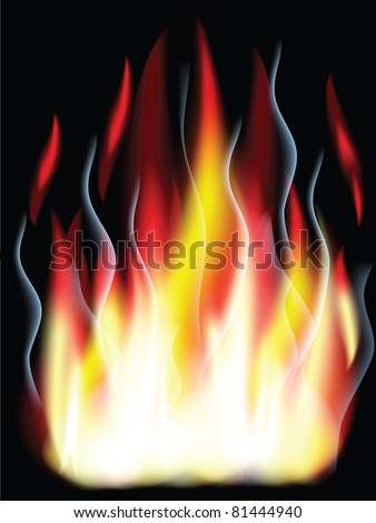 Fire  on the black background.
