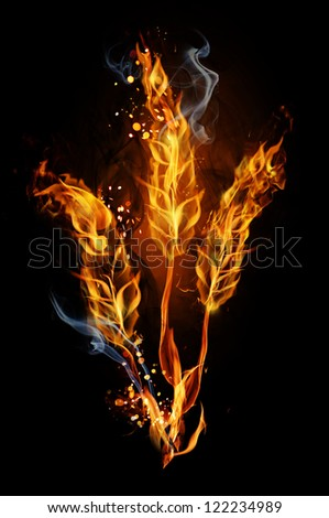 Fire sign - wheat (symbol of Ukraine) - stock photo