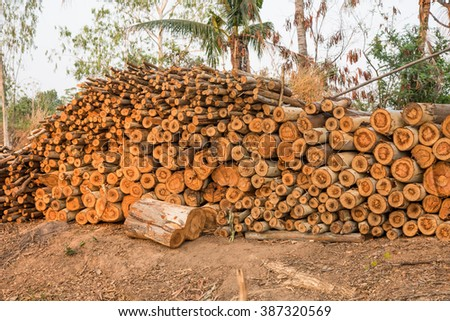 fire wood - stock photo