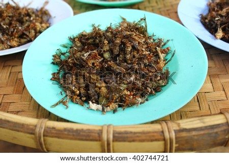 Fired cricket: The local food of north-eastern, Thailand. - stock photo