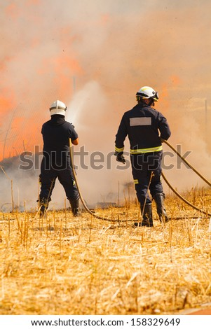 Firefighters extinguish a fire in the forest with a water hose - stock photo