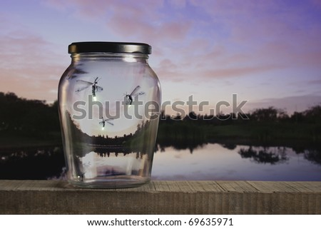 fireflies in a jar at sunset - stock photo