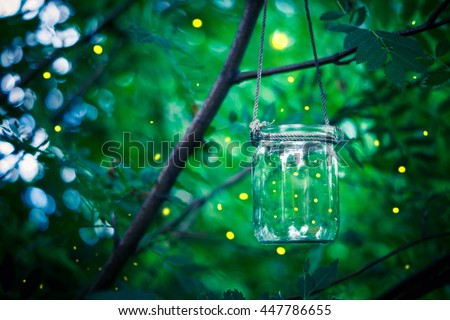 Firefly in a jar - stock photo