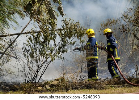 Firemen fighting a bushfire Piarco Trinidad - stock photo