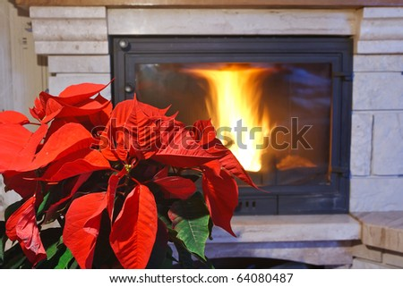 Fireplace and flower - stock photo