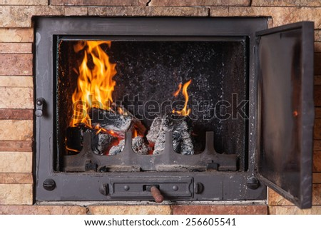 fireplace with the door open and burning firewood