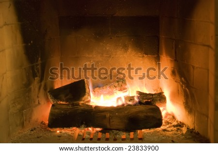 Fireplace with wood and flame