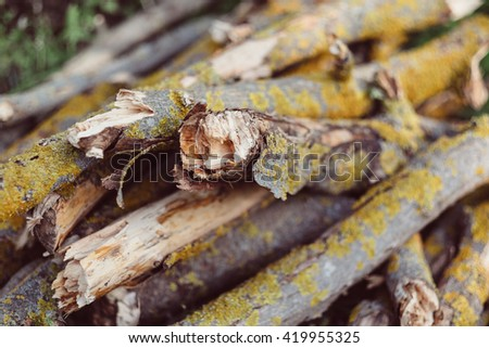 Firewood background. Chopped firewood on a stack. Pile of cut timber for campfire. A stack of firewood on grass. Wood timber pile. - stock photo