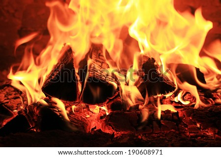 firewood burns in a fire on a black background - stock photo