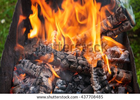 Firewood for burning coals in the grill, close-up - stock photo