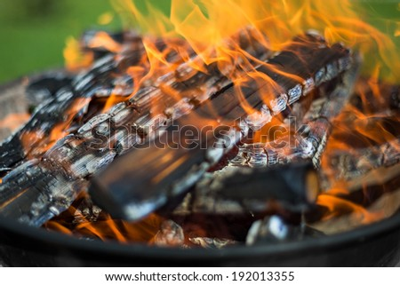 Firewood in barbecue