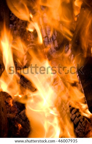 firewood in orange fire