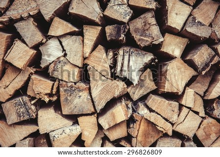 firewood - oak tree and ash tree - stock photo