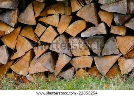 Firewood on the grass - stock photo