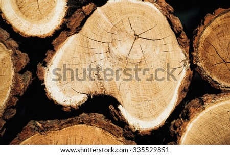 firewood round close-up background high resolution photos - stock photo