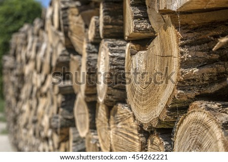firewood stack, Pile of wood logs, Wood Background