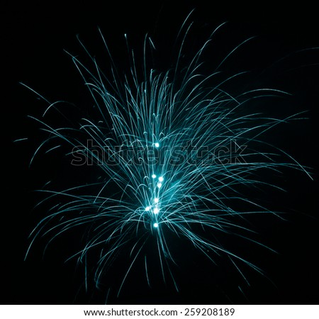 Firework beautiful display in the night sky - stock photo