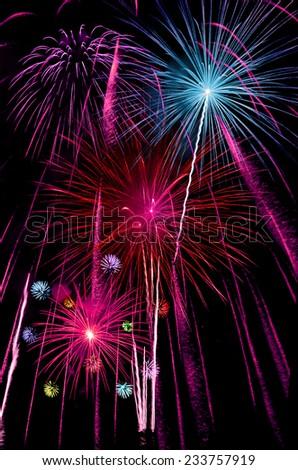 Firework Celebration. - stock photo
