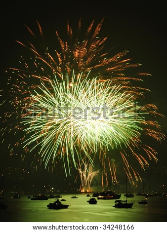 firework in the sky - stock photo