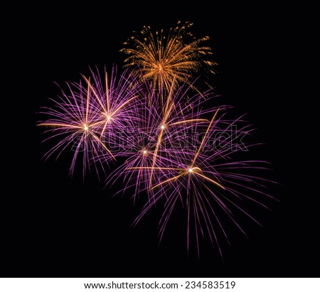 Firework or fire flower   in celebration night