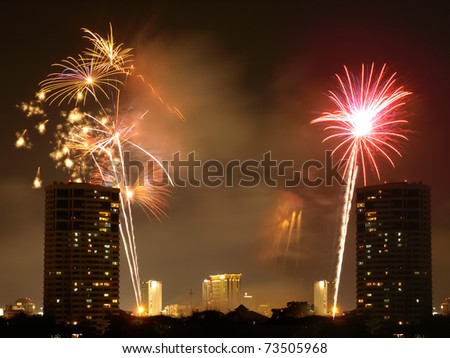 Fireworks coming to life over a city at night.