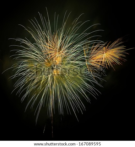 Fireworks Display Brightly and colorful - stock photo