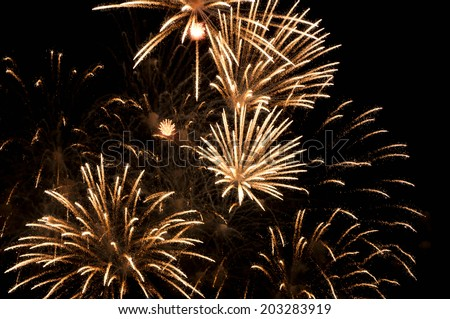 Fireworks in the night sky - stock photo