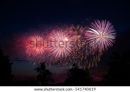 Fireworks on the background of trees and dark sky.