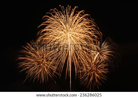 fireworks on the black sky background - stock photo