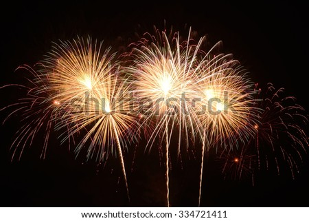 fireworks on the black sky background