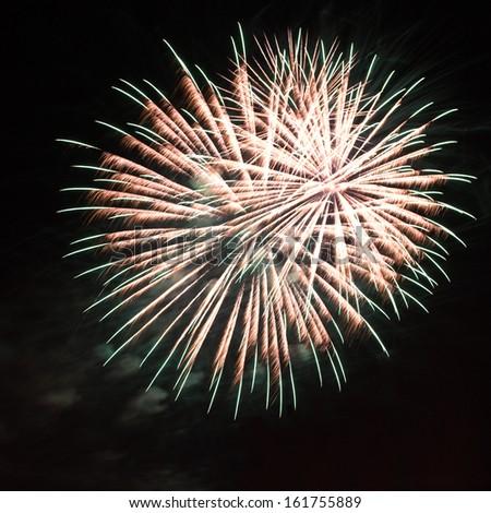 Fireworks on the black sky - the celebration concept - stock photo
