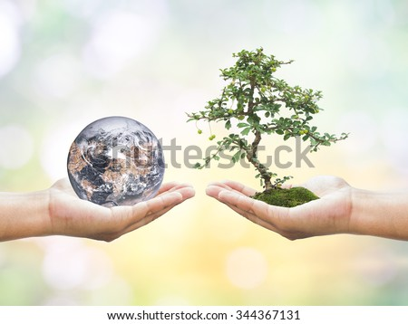 First, human hands holding medium tree. Second, human hands holding planet barren over blurred beautiful nature background. Ecology concept. Elements of this image furnished by NASA. - stock photo