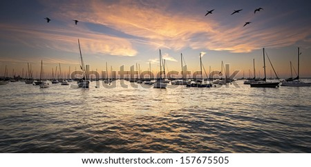 First light on the sailboats moored at Monroe Harbor on the Chicago Lakefront. - stock photo