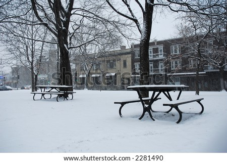 First snow fall - Montreal park - stock photo