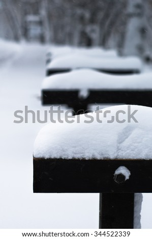 First snow is falling on a bench at Kosutnjak forest, Belgrade, Serbia