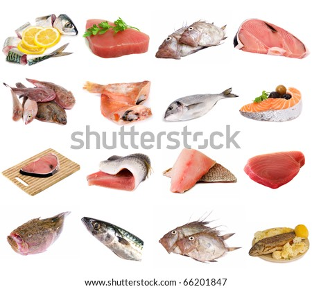 fish and fish fillets