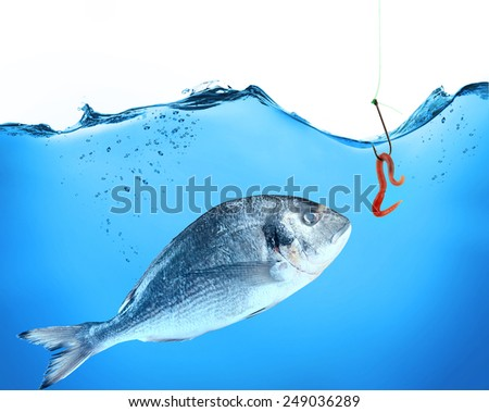 Fish and hook with worm in water - stock photo