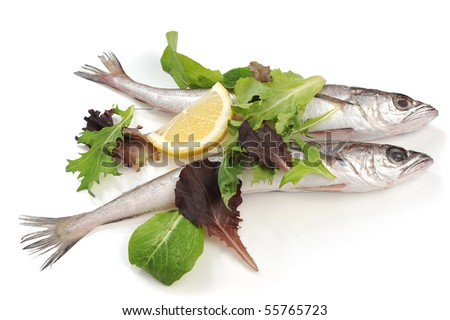 Fish and salad studio isolated on white background