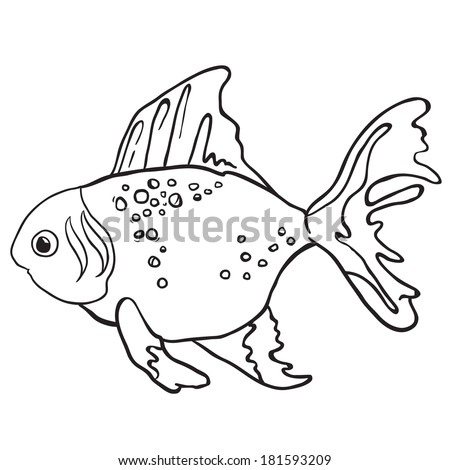 Digital Collage Of Coloring Page Outlines Of Sea Creatures 1 231384 further Diving as well Classes likewise 423549539928983328 likewise Animal coloring pages. on deep water shark