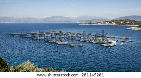 Fish breeding with tanks directly into the sea - stock photo