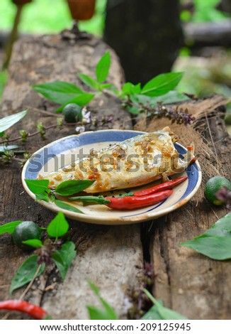 Fish cooked with fish sauce in Vietnamese style (ca? kho). It's decorated with basil and satsumas in vintage way. Ca? kho is very popular in Vietnamese meal. Vietnam food photography - stock photo