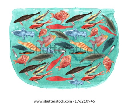 Fish diversity in one fishbowl hand drawn watercolor illustration - stock photo