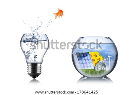 fish energy change concept - stock photo