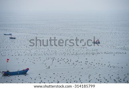 Fish farm in sea,china  - stock photo