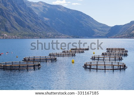 Fish farm in the Bay of Kotor. Montenegro - stock photo