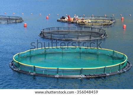 Fish farm in the bay of Kotor, Montenegro - stock photo